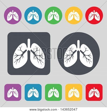 Lungs Icon Sign. A Set Of 12 Colored Buttons. Flat Design. Vector