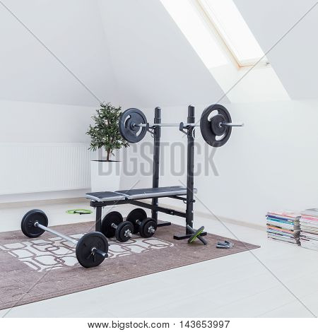 Small Home Gym