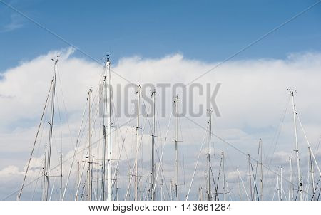 Many sailing boat mast tips high on blue sky and big white cloud