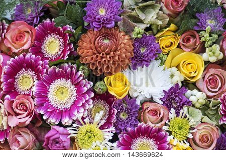 Bunch of flowers in the Colors of fall