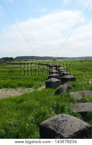 A view of old world war two anti tank defences at tentsmuir forest