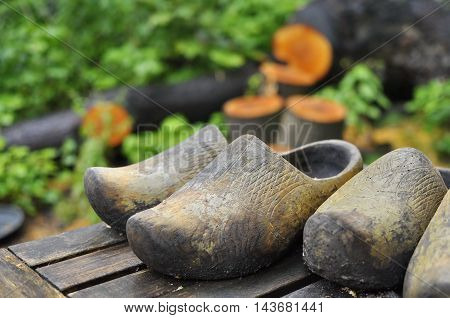 3 old dutch wooden shoes (klumpen) on top of a wooden garden table in front of chopped wood logs in a garden.