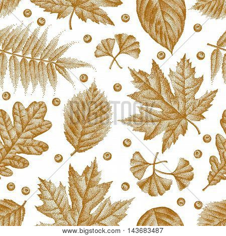Pattern Etching Leaves_05.eps