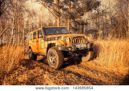 Leningrad oblast , Kirovsky district, Russia , December 25, 2015 , Jeep Wrangler in the woods, the Jeep Wrangler is a compact four wheel drive off road and sport utility vehicle