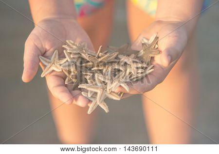 Many fresh seastars in the woman hands on the Goan beach. Creamy toned image selective focus