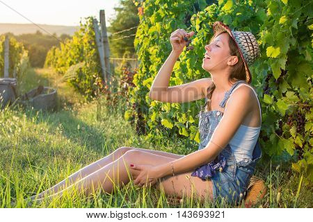 Happy Woman Eating Grapes In Vineyard