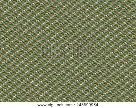 Abstract nature background of repeated diagonal blocks.