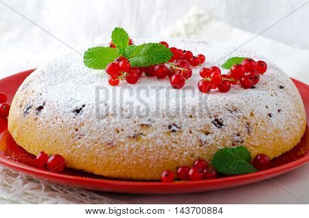 Vanilla sponge cake with fresh red currants on white background