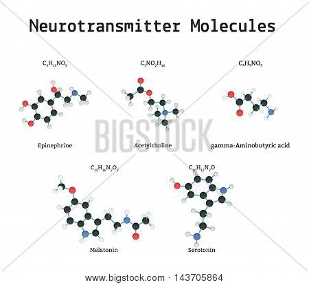 Neurotransmitter molecules set isolated on white in vector