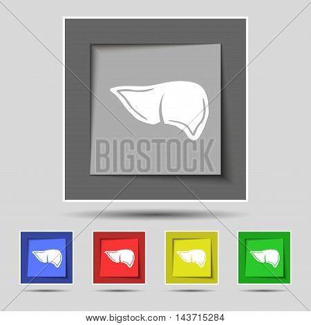 Liver Icon Sign On Original Five Colored Buttons. Vector