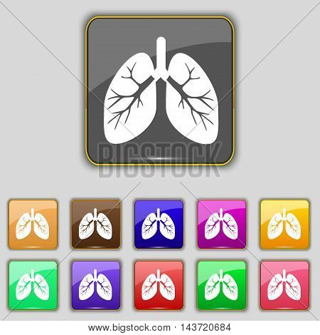 Lungs Icon Sign. Set With Eleven Colored Buttons For Your Site. Vector