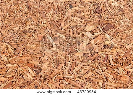 ligth brown background from pressed wood chips