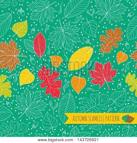 Autumn seamless pattern with seeds and leaves. Vector illustration