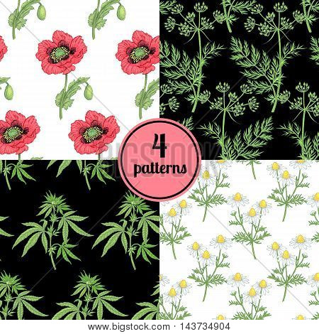 Set of four seamless vector patterns with various plants cumin lemon coffee dandelion.