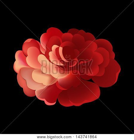 Flower element on black background. Cute retro design in bright colors for stickers, labels, tags, gift wrapping paper.