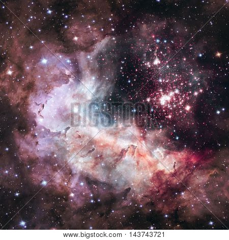 Super Star Cluster Westerlund 2 In The Constellation Carina.