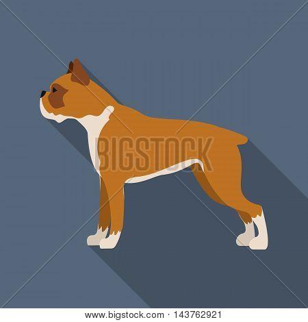 Boxer dog vector illustration icon in flat design