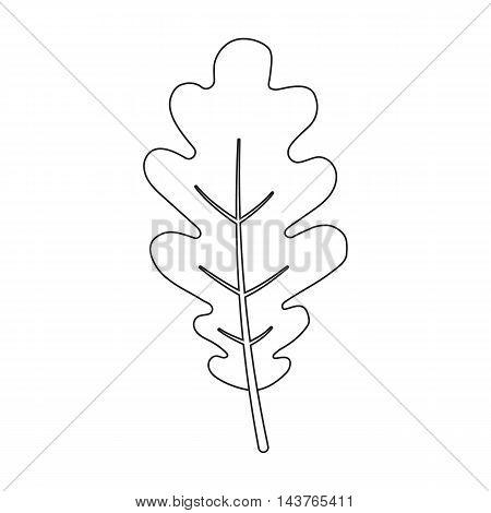 Oak Leaf vector illustration icon in line design
