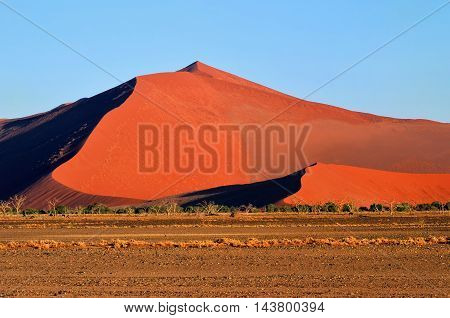 Beautiful landscape with big red dune at sunrise Sossusvlei Namib Naukluft National Park Namibia Namib desert Africa