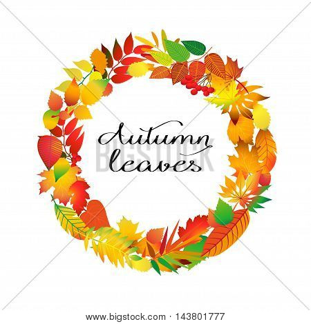 Autumnal round frame. Wreath of autumn leaves. Background with beautiful autumn leaves. Fall of the leaves. Isolated design elements. Vector illustration.