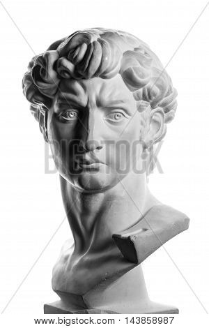 gypsum head of Michelangelo's David isolated over a white background