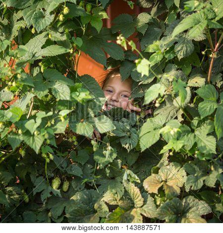 Little girl peeking out of garden greens.