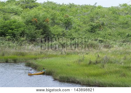 XPUJIL CAMPECHE MEXICO - JULY 9 2016: Subsistence fishing practices are still common in rural parts of Mexico such as here in a savannah swamp near Xpujil in the Yucatan Peninsula.
