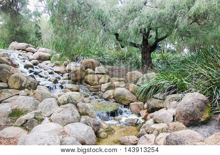 Man made trickling waterfall with rocks in garden pond with native plants at King's Park in Perth, Western Australia.