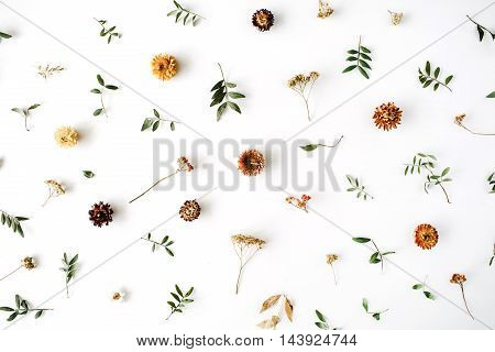 yellow dry flowers branches leaves and petals pattern isolated on white background. flat lay overhead view
