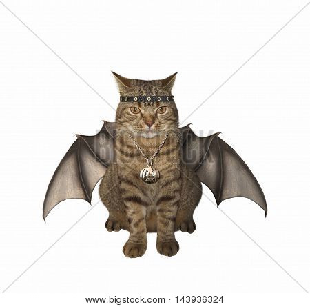 A cat has wings on the white background.. It looks like a bat.