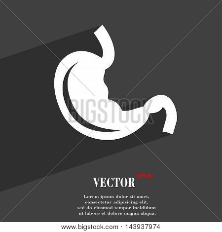 Stomach Symbol Flat Modern Web Design With Long Shadow And Space For Your Text. Vector