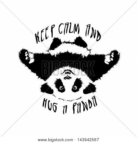 Funny and touching panda wants to hug and cuddle. keep calm and hug a panda