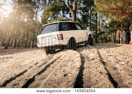 Saratov, Russia - September 01, 2014: Car Land Rover Range Rover stand on sand near forest at daytime