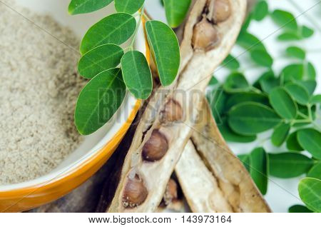 Moringa Leaf And Seed On White Background