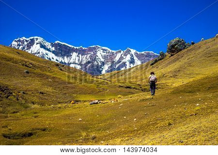 Lonely traveller going to a big ice montain at ausangate