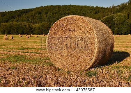 Hay bail harvesting in golden field landscape. Summer Farm Scenery with Haystack on the Background of Beautiful Sunset.