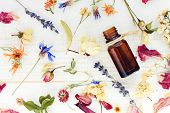 Aromatic essential oil. Top view dropper bottle among colourful dried flowers, medicinal herbs gathering, scattered white wooden table. poster
