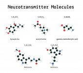 Neurotransmitter molecules set isolated on white in vector poster