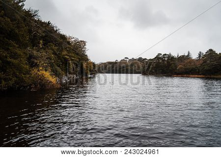 Scenic View Of Lake In Killarney A Misty Day Against Sky