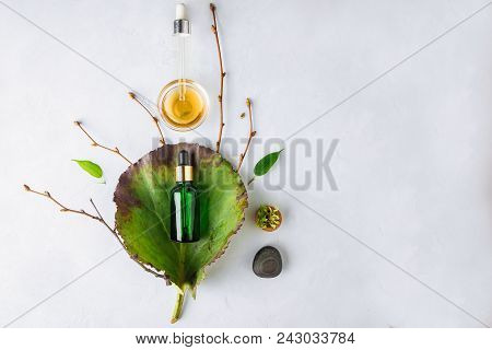 Organic Spa Cosmetic With Herbal Ingredients. Vegetable Serum For Skin. Serum With Herbal Extracts.