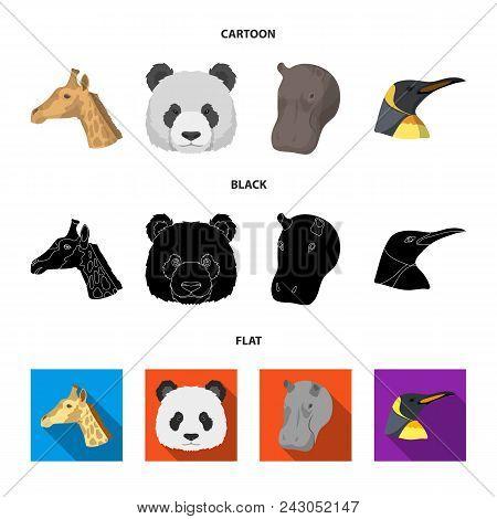 Panda, Giraffe, Hippopotamus, Penguin, Realistic Animals Set Collection Icons In Cartoon, Black, Fla