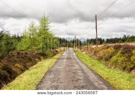 Road In The Scottish Highlands In Spring