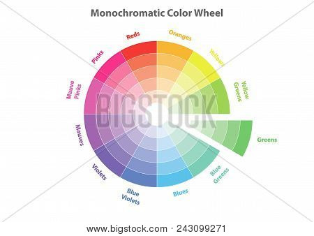 Monochromatic Color Wheel, Color Scheme Theory, Greens Color In Evidence, Vector Isolated Or White B