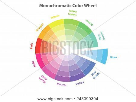 Monochromatic Color Wheel, Color Scheme Theory, Blues Color In Evidence, Vector Isolated Or White Ba