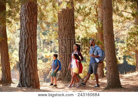 Family On Hiking Adventure Through Woods By Lake