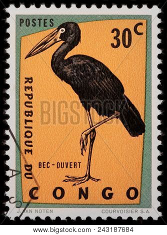 Luga, Russia - January 23, 2018: A Stamp Printed By Congo Shows The African Openbill - A Species Of