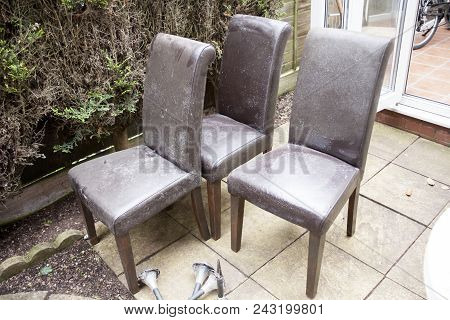 Empty Wooden Chairs In The Garden. Old And Used Leathered Chairs In The Garden. Four Dirty Chairs. H