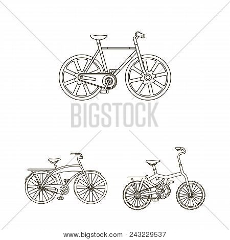 Various Bicycles Outline Icons In Set Collection For Design. The Type Of Transport Vector Symbol Sto