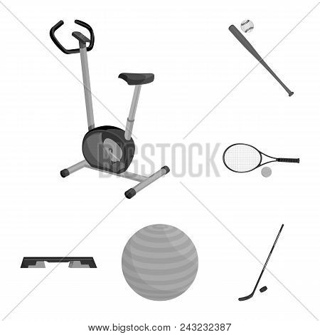 Different Kinds Of Sports Monochrome Icons In Set Collection For Design. Sport Equipment Vector Symb