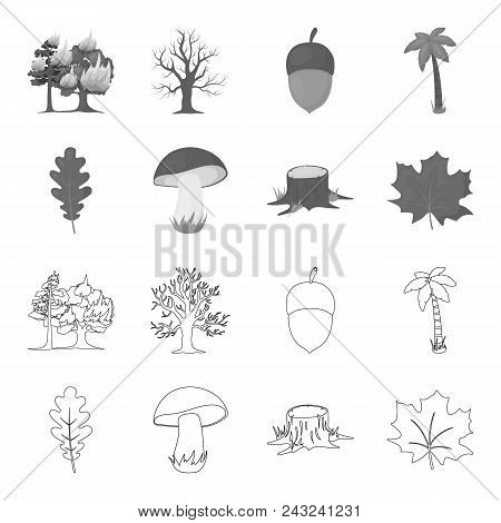Oak Leaf, Mushroom, Stump, Maple Leaf.forest Set Collection Icons In Outline, Monochrome Style Vecto
